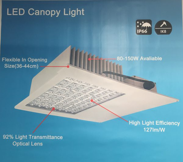 LED Canopy Light - N1 Series